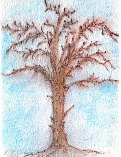 December tree